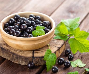 Jak wykorzystać liście czarnej porzeczki?