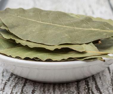 Jak wykorzystać liście laurowe?