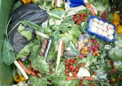 Jak wykorzystać resztki warzyw /© Photogenica