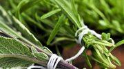 Jak wykorzystać zioła w kuchni