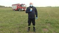 Jak wypalanie traw niszczy Ziemię?