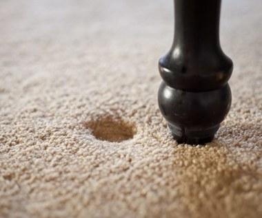 Jak za pomocą kostek lodu pozbyć się wgnieceń po meblach z dywanów?