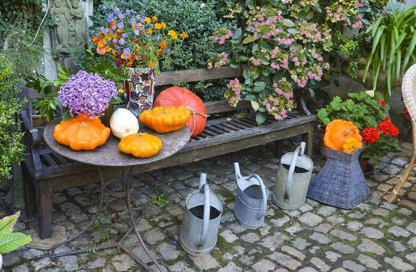 Jak zaaranżować jesienny taras lub balkon? /©123RF/PICSEL