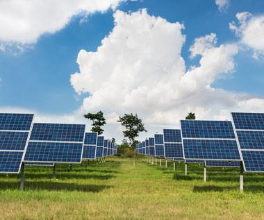 Jak zachodnie koncerny obchodzą węglową energetykę