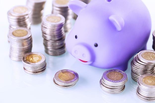 Jak zaradzić niskiej emeryturze? Ta grupa zawodowa ma na to sposób /©123RF/PICSEL