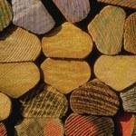 Jak zbudować wiatę na drewno? Ile to kosztuje?
