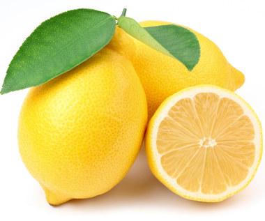 Jak zrobić, aby cytryny pozostały świeże na dłużej?