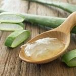 Jak zrobić domową, naturalną galaretkę z aloesu?