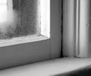 Jak zrobić domowy osuszacz powietrza?