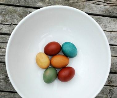 Jak zrobić naturalnie barwione jajka wielkanocne?