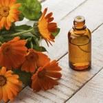 Jak zrobić olejek nagietkowy?
