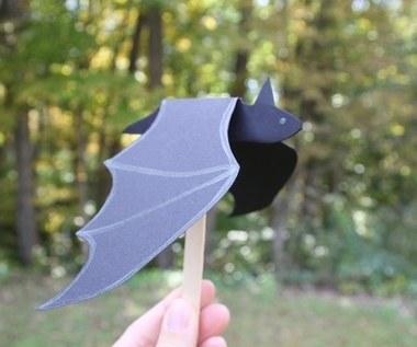 Jak zrobić ozdobnego nietoperza na Halloween?
