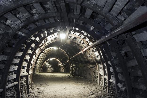 Jaka będzie przyszłość Polskiej Grupy Górniczej /©123RF/PICSEL