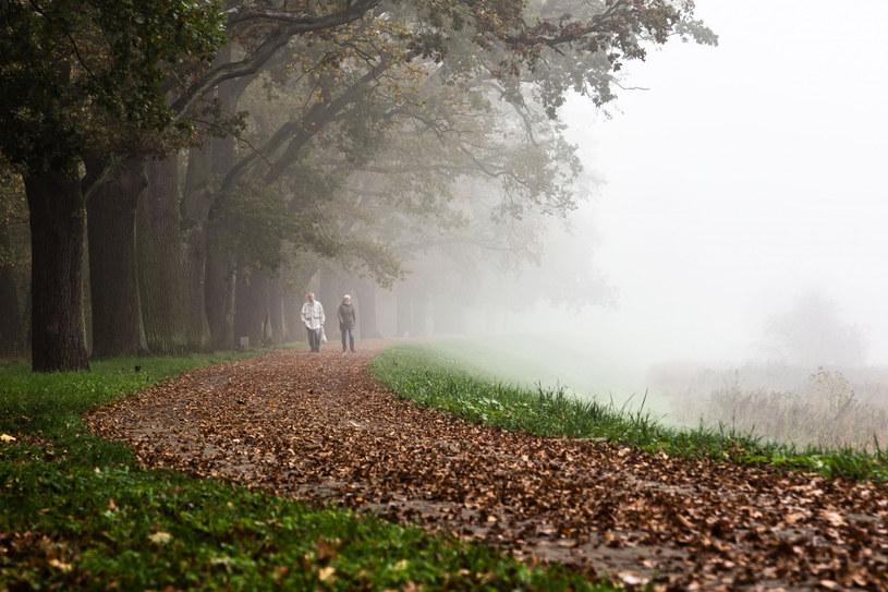Jaka pogoda 11 listopada? /Magdalena Pasiewicz