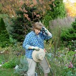 Jakie błędy najczęściej popełniamy w ogrodzie?