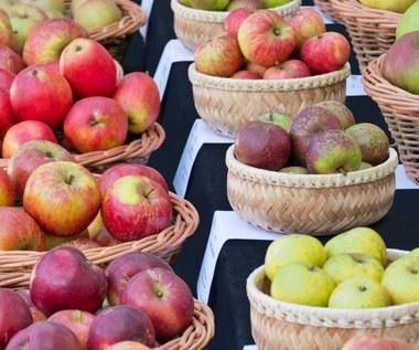 Jakie jabłka wybrać do szarlotki, a z których zrobić sok i przetwory?