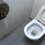 Jakie jest najbrudniejsze miejsce w toalecie publicznej?