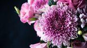 Jakie kwiaty na jaką okazję?
