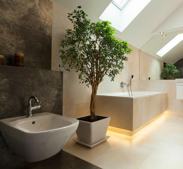 Jakie rośliny będą najlepiej rosnąć w łazience? /©123RF/PICSEL