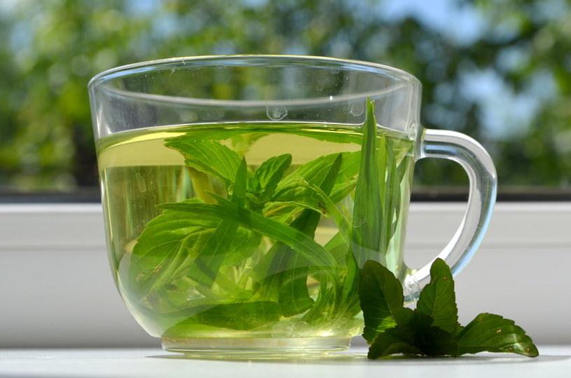 Jakie są korzyści z picia zielonej herbaty? /123RF/PICSEL