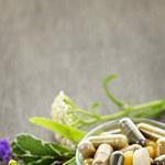 Jakie są najsilniejsze, naturalne antybiotyki?