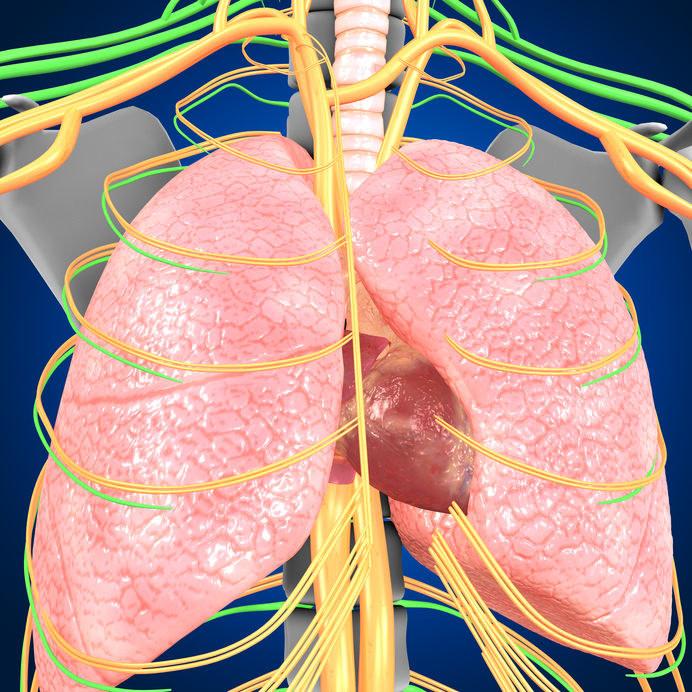 Jakie są objawy tętniczego nadciśnienia płucnego? /©123RF/PICSEL