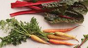 Jakie warzywa można zasadzić o te porze roku?