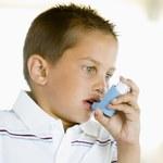 Jakie zioła stosować na astmę?