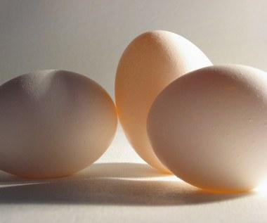 Jakie zmiany zauważysz jedząc trzy jajka dziennie przez tydzień?