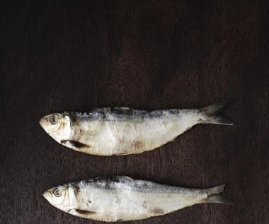 Jakie znaczenie dla naszego organizmu ma kwas tłuszczowy omega 3?