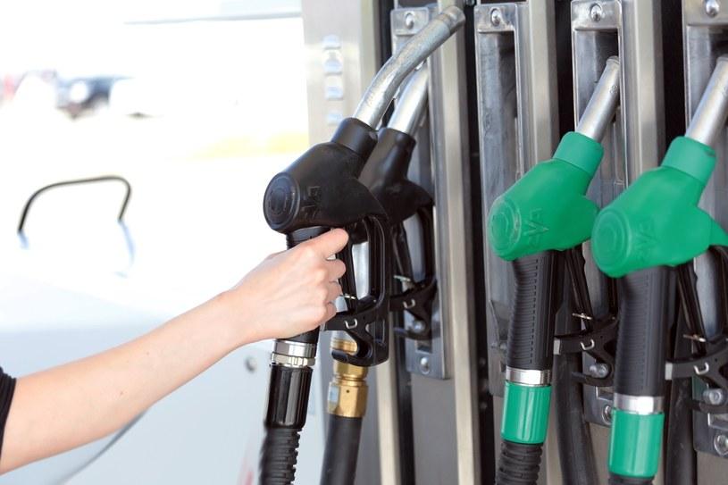 Jakość paliw jest w Polsce coraz lepsza /Piotr Jędzura /Reporter