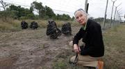 Jane Goodall - pani od szympansów