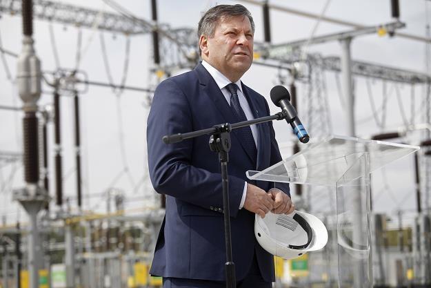 Janusz Piechociński podczas uruchomienia stacji elektroenergetycznej 400 kV Łomża Stare Modzele /PAP