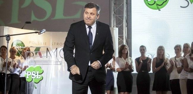 Janusz Piechociński /PAP/Michał Walczak /PAP