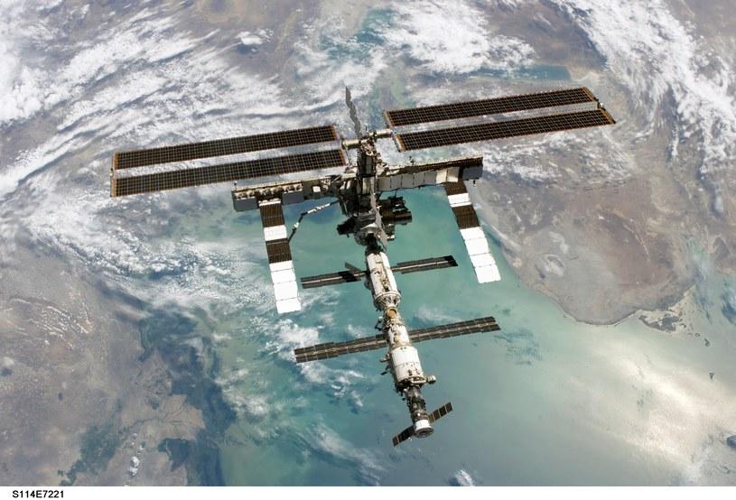 Japończycy chcą sprawdzić, jak wygląda poziom stresu u astronautów na ISS /NASA