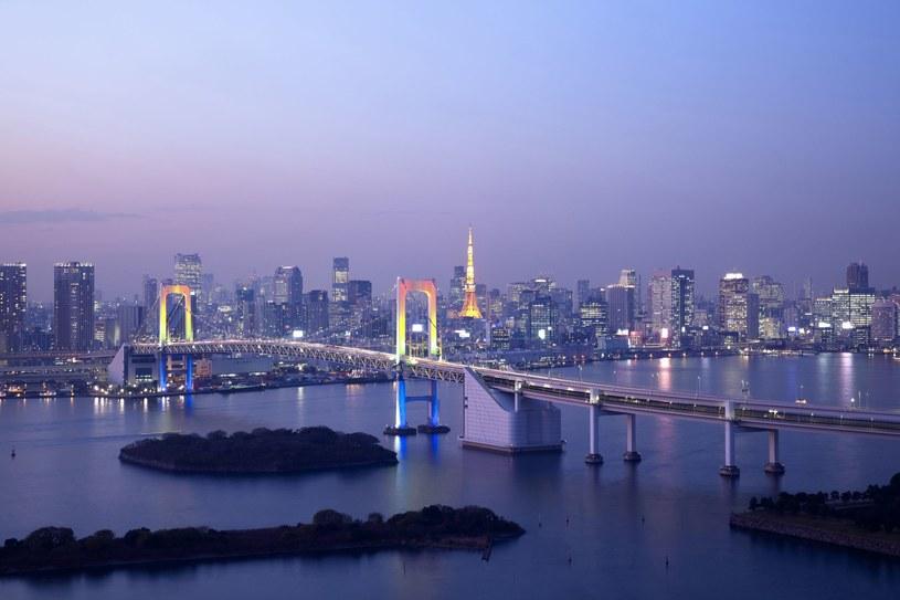 Japonia chce być bardziej odporna na ataki hakerskie /123RF/PICSEL