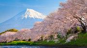 Japonia - kraj o najlepszej reputacji