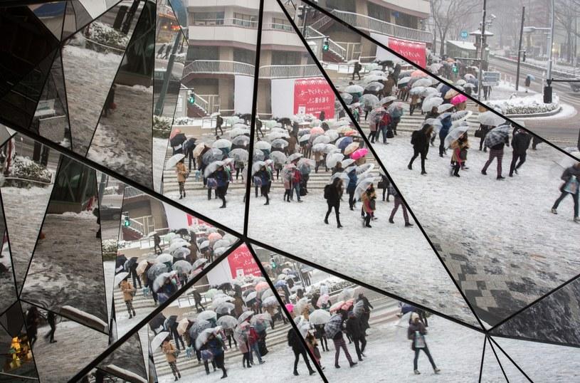 Japonia sparaliżowana śnieżycami /PAP/EPA