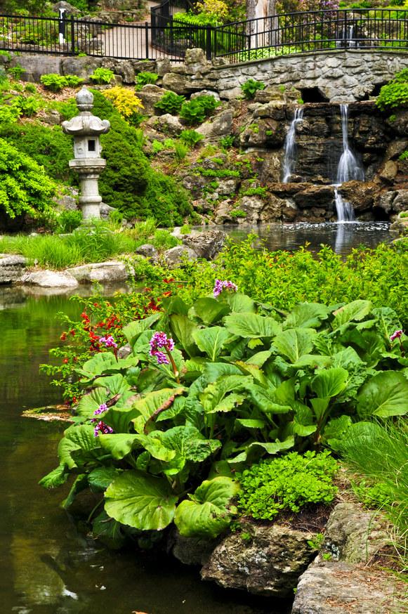japoński ogród /© Photogenica