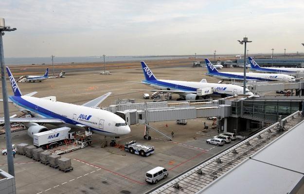 Japońskie linie lotnicze ANA i JAL posiadają łącznie 24 Dreamlinery /AFP