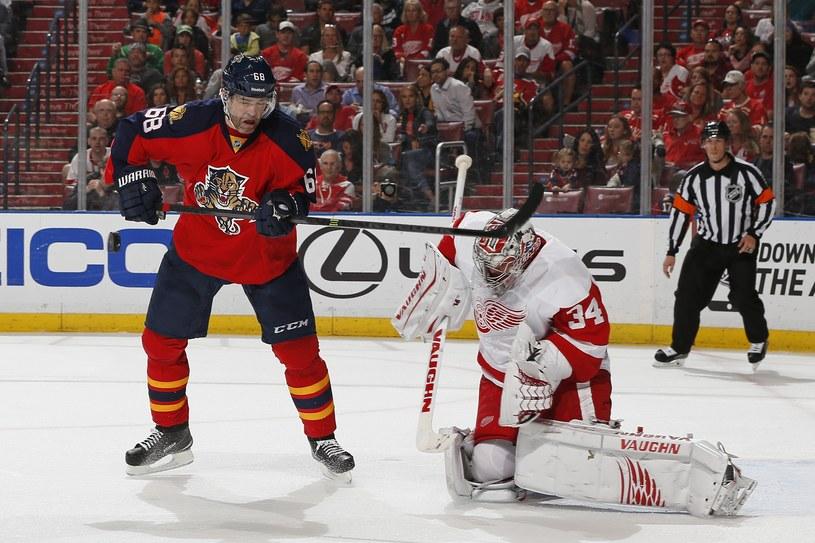 Jaromir Jagr szturmuje bramkę Detroit Red Wings /AFP