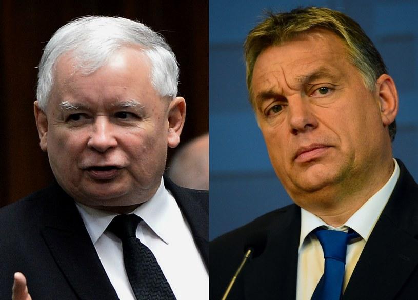 Jarosław Kaczyńki, Viktor Orban /AFP