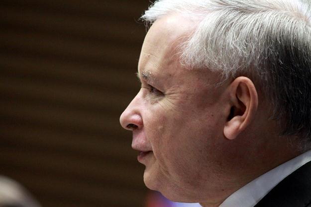 Jarosław Kaczyński chce iść śladami Viktora Orbana /fot. Mateusz Owsianny /East News