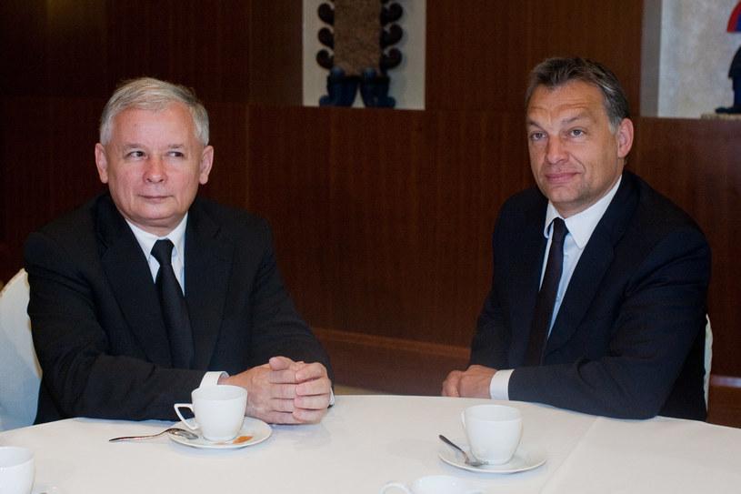 Jarosław Kaczyński i Viktor Orban w 2010 r. /Radek Pasterski/Fotorzepa /Agencja FORUM