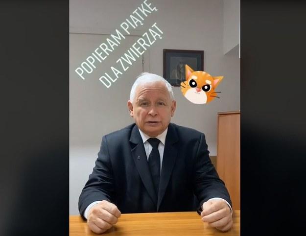 Jarosław Kaczyński na TikToku. Rzuca wyzwanie premierowi