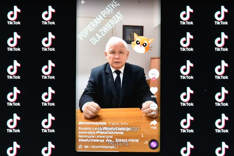 Jarosław Kaczyński na TikToku / Łukasz Dejnarowicz  /Agencja FORUM