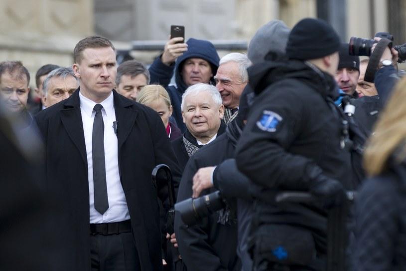 Jarosław Kaczyński na Wawelu /Łukasz Gadulski /East News