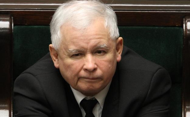 Jarosław Kaczyński, prezes PiS /PAP