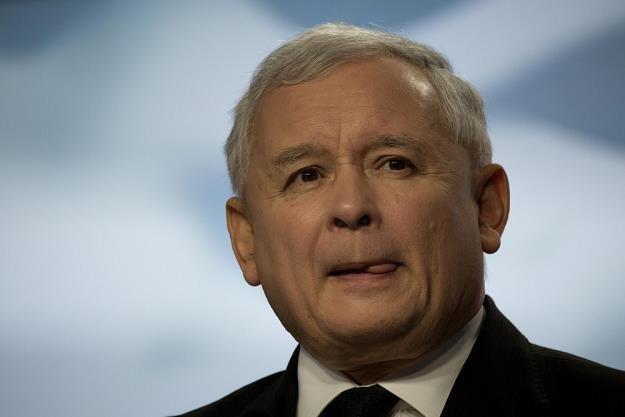 Jarosław Kaczyński, prezes Prawa i Sprawiedliwości /fot. Darek Redos /Reporter