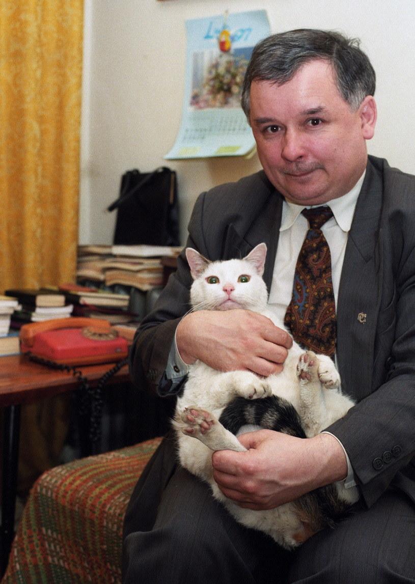 Jarosław Kaczyński z jednym ze swoich kotów /Andrzej Wiernicki /Agencja FORUM